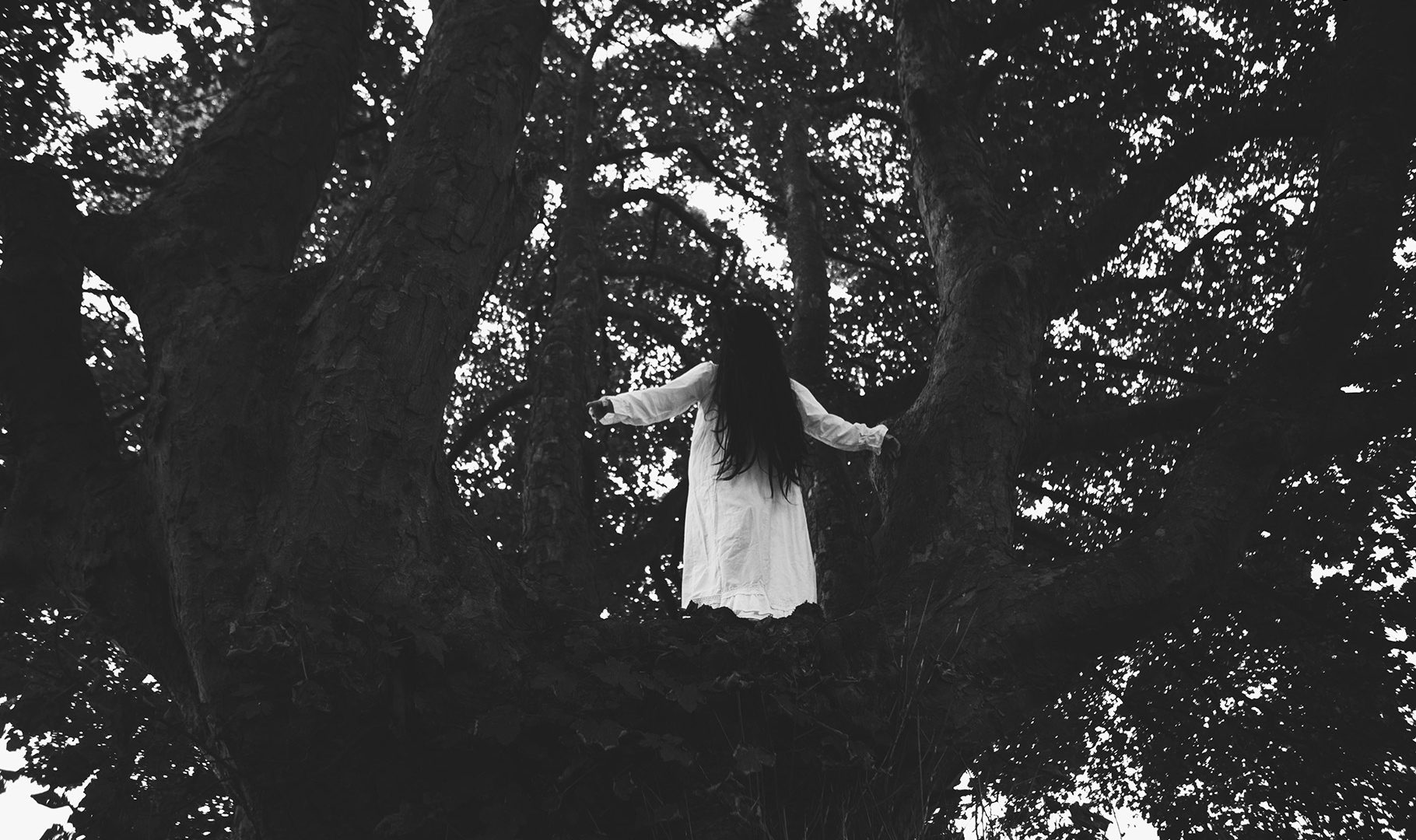 Ghost woman in white with long black hair in a tree